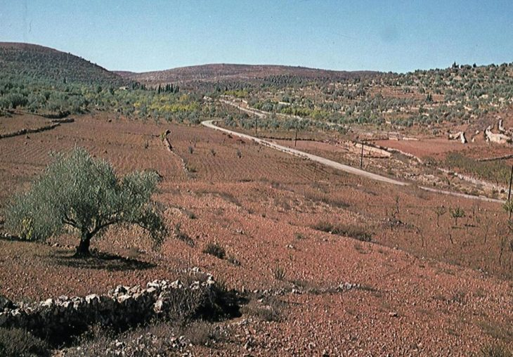 Landscape characteristic of large parts of Samaria and Galilee