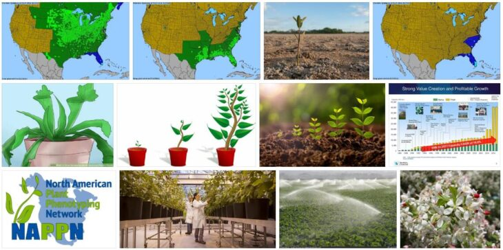 North America Plant Growth