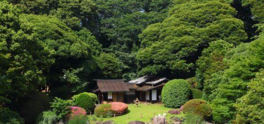 Japanese Garden in Tokyo National Museum